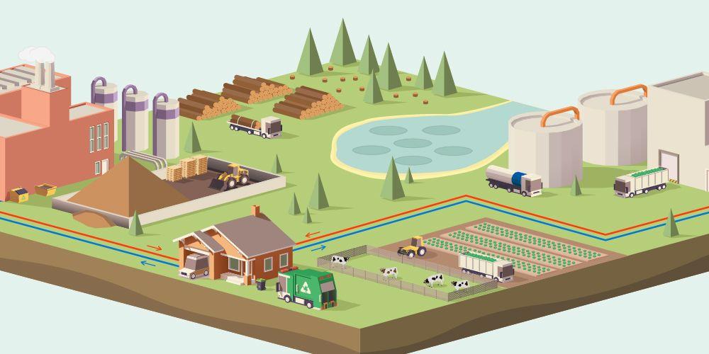 Infographic: Wat is biomassa?