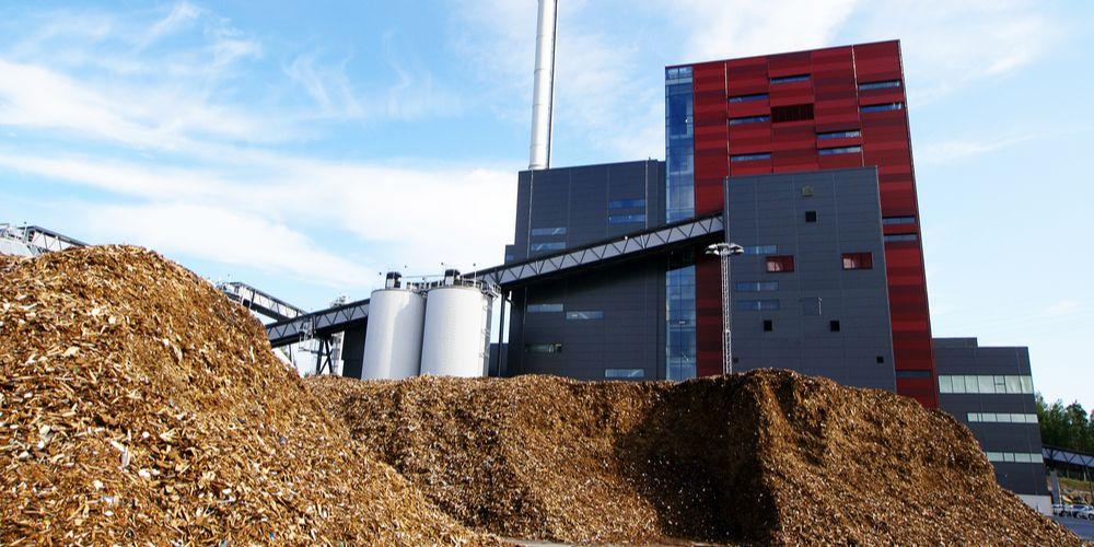 Gaat biomassacentrale in Meppel over de kop?